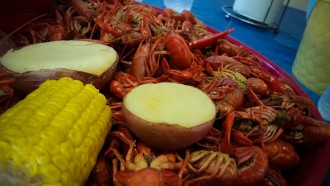 Jug's Seafood in  Theriot, LA